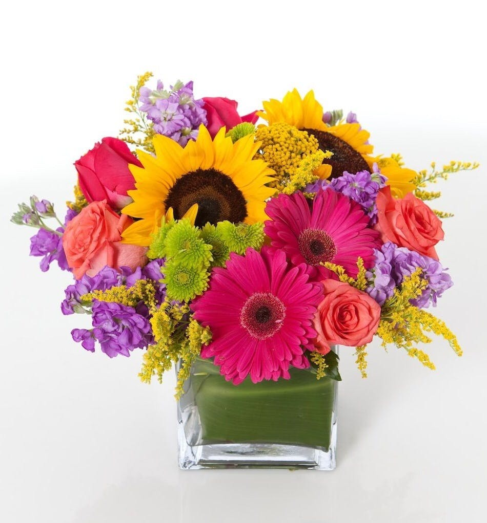 Long lasting sunflowers daisies tulsa ok florist sunflowers and a variety of pink and purple flowers in a glass cube vase izmirmasajfo