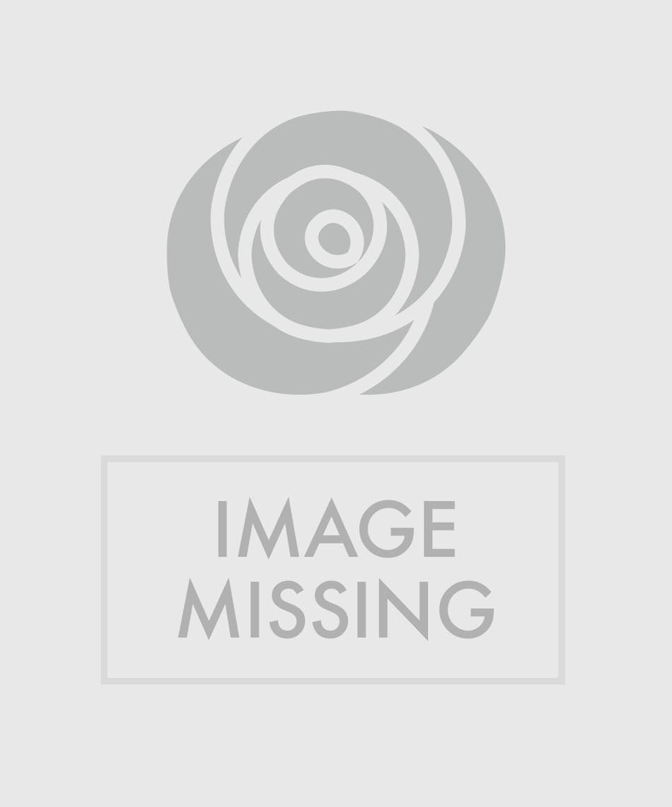 Large Vase Of All Seasonal Flowers In Shades Blue Lavender And Pink