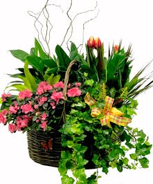 Variety of flowers and curly willow in a basket.