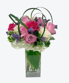 Pastel Compact Roses