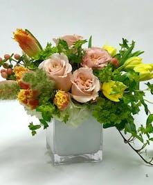 Winston's Peach - Tulsa Florist - mary Murray's Flowers - Tulsa, Oklahoma (OK)