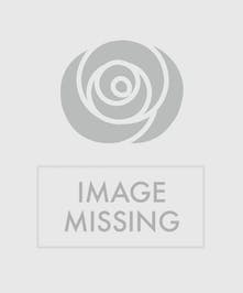 Patriotic display of red, white and blue flowers in a white urn.