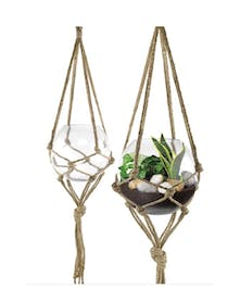 Macrame hanger with a plant in a glass continer.