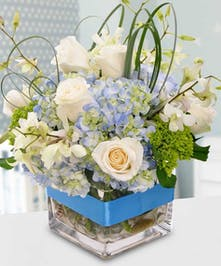White roses and orchids with blue and green hydrangea and greenery in a clear glass cube vase tied with a blue ribbon.