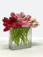 30 tulips valentine colors